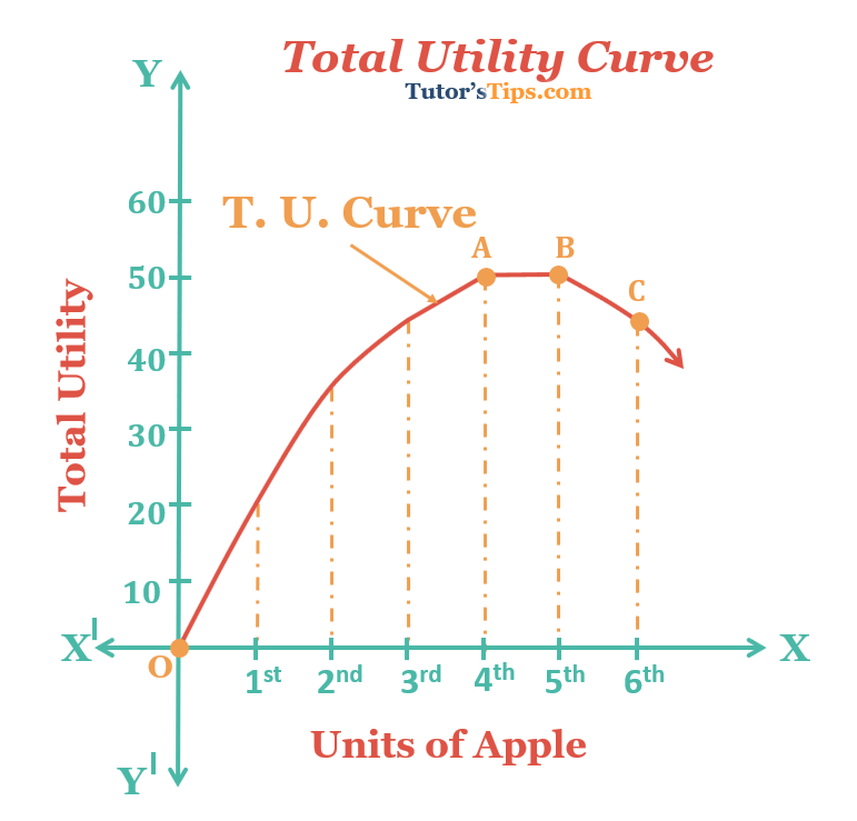 Total Utility Curve graph - Utility - Meaning, Definition and its types
