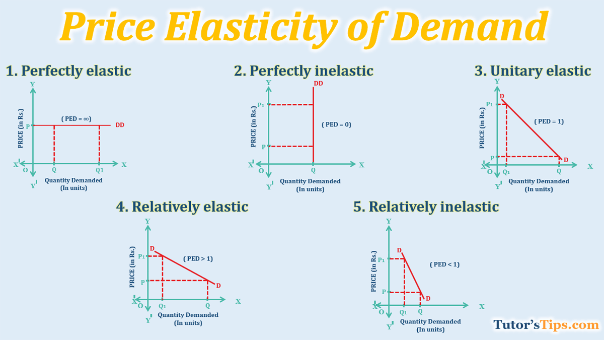 Price Elasticity Of Demand And Explained Its Types Tutorstips