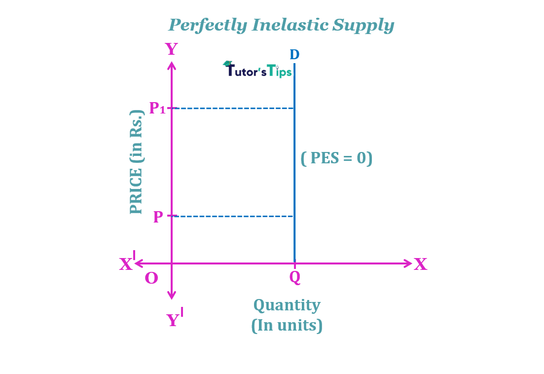 perfectly inelastic supply min - The elasticity of Supply- Meaning, Types and Methods
