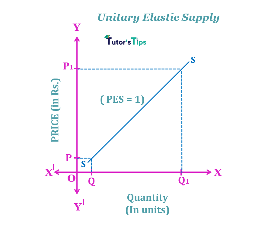 unitary elastic supply min 3 - The elasticity of Supply- Meaning, Types and Methods