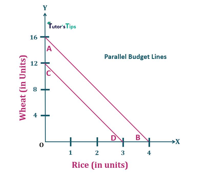 3.Parallel budget lines Properties of Budget Line 1 - Consumer's Budget- Budget set and Budget Line
