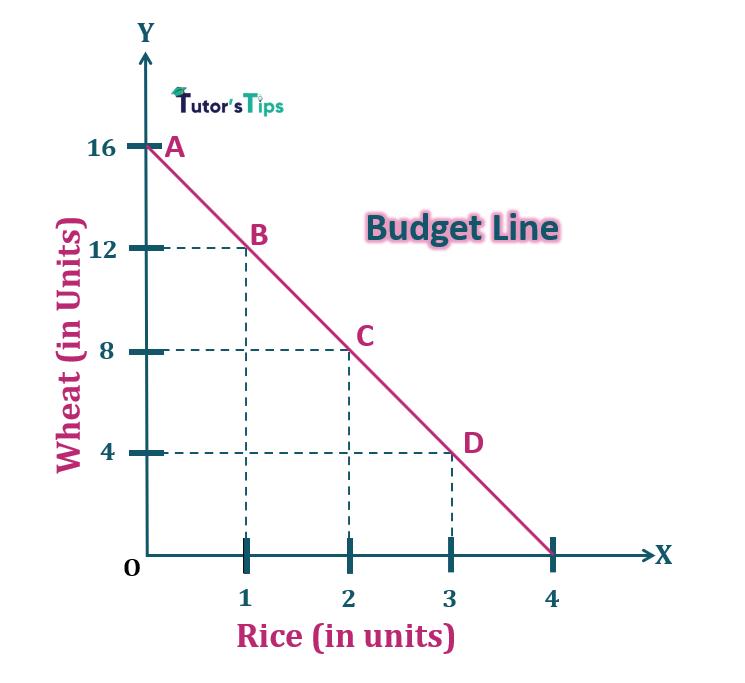 Budget Line 1 - Consumer's Budget- Budget set and Budget Line