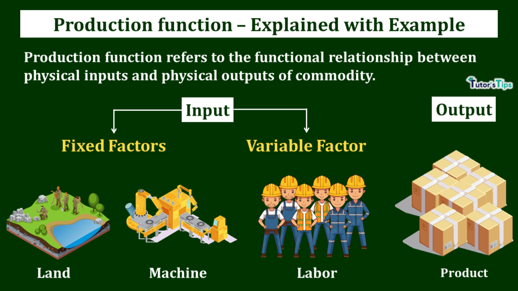 Production Function - Meaning and Types