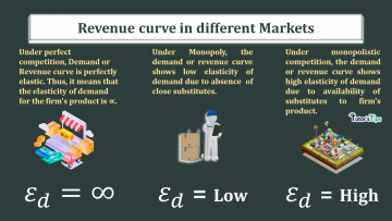 The elasticity of demand or revenue curve in different Markets 360x203 - Business Economics