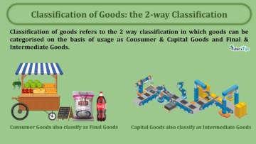 Classification of Goods the 2 way Classification min 360x203 - Business Economics