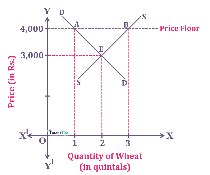 Price Floor 1 - Price Floor - Meaning and its Graphical Representation