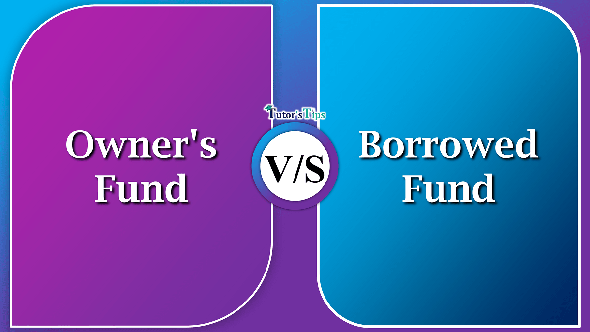 Difference between Owner's Fund and Borrowed Fund