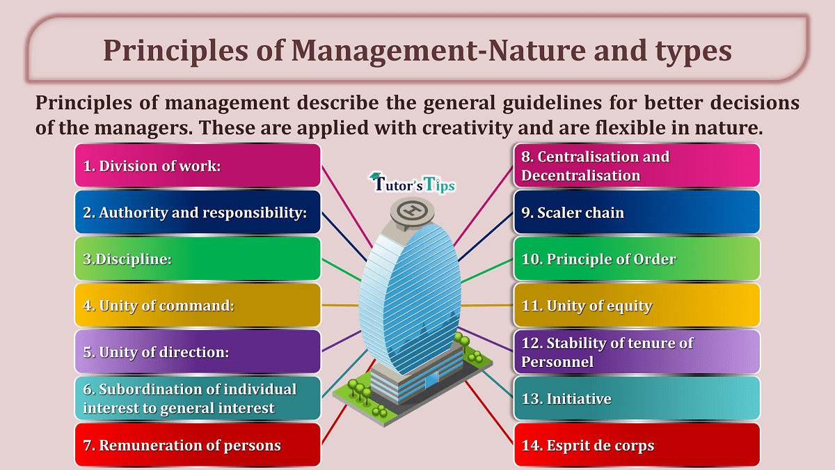 Principles of Management-Nature and types