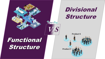 Difference between FDifference between Functional and Divisional Structureunctional and Divisional Structure min 360x203 - Differences - Business Studies