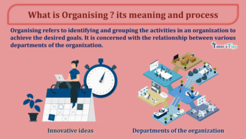 What is Organising its meaning and process min 360x203 - Business Studies